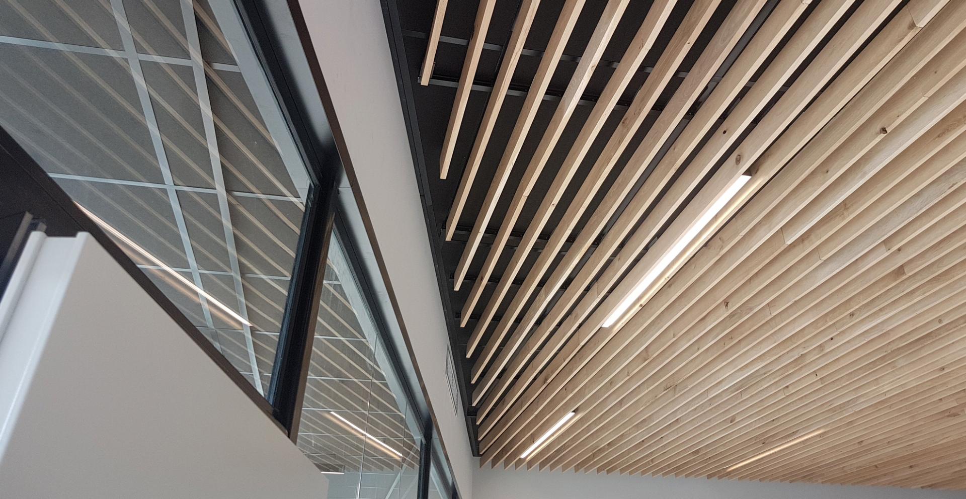 plafonds-2.jpg